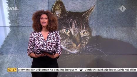 cap_Goedemorgen Nederland (WNL)_20171110_0707_00_10_37_210