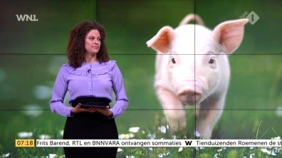 cap_Goedemorgen Nederland (WNL)_20171127_0707_00_11_11_110