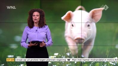 cap_Goedemorgen Nederland (WNL)_20171127_0707_00_11_23_112