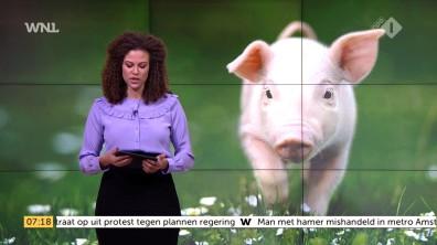 cap_Goedemorgen Nederland (WNL)_20171127_0707_00_11_23_113