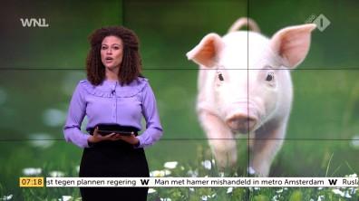 cap_Goedemorgen Nederland (WNL)_20171127_0707_00_11_25_119
