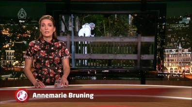 cap_Hart van Nederland - Laat_20171205_2227_00_05_29_12