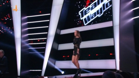 cap_The voice of Holland_20180112_2030_00_42_26_516