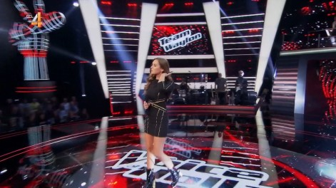 cap_The voice of Holland_20180112_2030_00_42_33_520