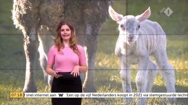 cap_Goedemorgen Nederland (WNL)_20180412_0707_00_11_26_83
