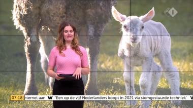 cap_Goedemorgen Nederland (WNL)_20180412_0707_00_11_27_87