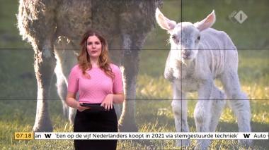 cap_Goedemorgen Nederland (WNL)_20180412_0707_00_11_28_91