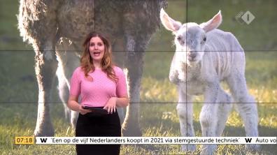 cap_Goedemorgen Nederland (WNL)_20180412_0707_00_11_28_92