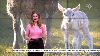 cap_Goedemorgen Nederland (WNL)_20180412_0707_00_11_31_102