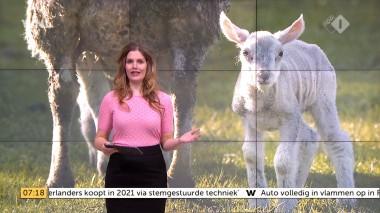 cap_Goedemorgen Nederland (WNL)_20180412_0707_00_11_31_103