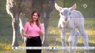 cap_Goedemorgen Nederland (WNL)_20180412_0707_00_12_04_105