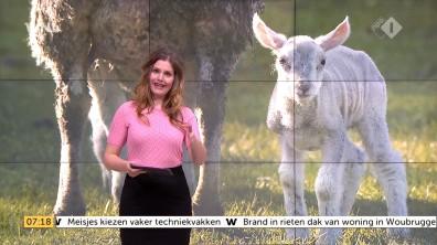 cap_Goedemorgen Nederland (WNL)_20180412_0707_00_12_04_106