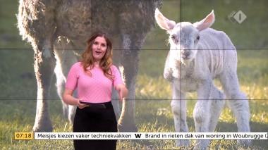 cap_Goedemorgen Nederland (WNL)_20180412_0707_00_12_04_107