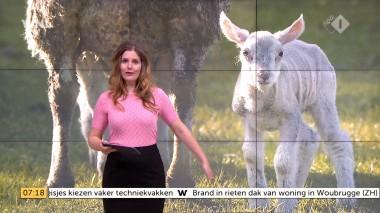 cap_Goedemorgen Nederland (WNL)_20180412_0707_00_12_05_109