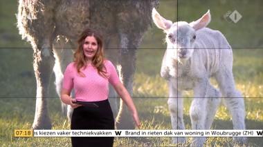 cap_Goedemorgen Nederland (WNL)_20180412_0707_00_12_05_110