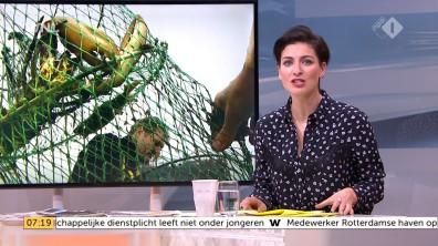 cap_Goedemorgen Nederland (WNL)_20180412_0707_00_12_47_135