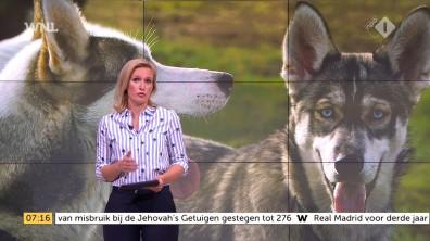 cap_Goedemorgen Nederland (WNL)_20180502_0707_00_10_07_132