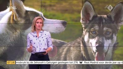 cap_Goedemorgen Nederland (WNL)_20180502_0707_00_10_08_134