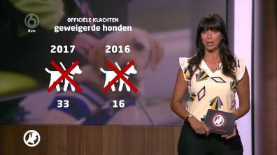 cap_Hart van Nederland - Late Editie_20180512_2227_00_15_42_48