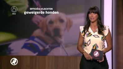 cap_Hart van Nederland - Late Editie_20180512_2227_00_15_46_55
