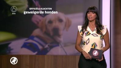 cap_Hart van Nederland - Late Editie_20180512_2227_00_15_46_56