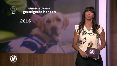 cap_Hart van Nederland - Late Editie_20180512_2227_00_15_47_57