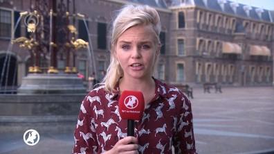 cap_Hart van Nederland - Late Editie_20180525_2230_00_06_20_40
