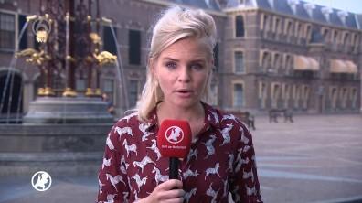 cap_Hart van Nederland - Late Editie_20180525_2230_00_06_29_50