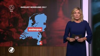 cap_Hart van Nederland - Late Editie_20180604_2227_00_16_15_125