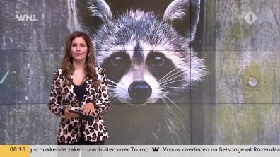 cap_Goedemorgen Nederland (WNL)_20180907_0807_00_11_51_69