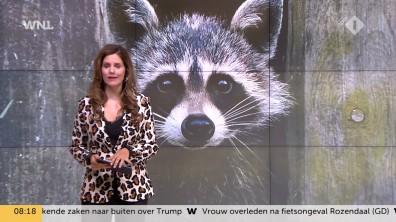 cap_Goedemorgen Nederland (WNL)_20180907_0807_00_11_52_73
