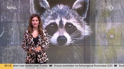 cap_Goedemorgen Nederland (WNL)_20180907_0807_00_11_53_77