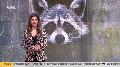 cap_Goedemorgen Nederland (WNL)_20180907_0807_00_11_54_80