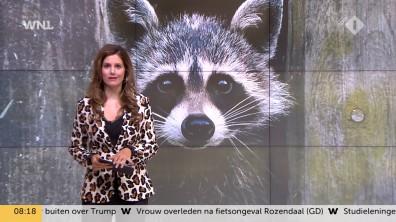 cap_Goedemorgen Nederland (WNL)_20180907_0807_00_11_55_81