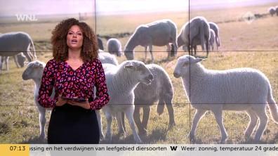 cap_Goedemorgen Nederland (WNL)_20181016_0707_00_06_32_50