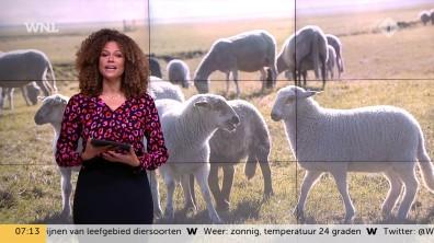 cap_Goedemorgen Nederland (WNL)_20181016_0707_00_06_34_57