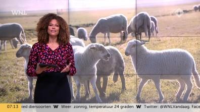 cap_Goedemorgen Nederland (WNL)_20181016_0707_00_06_36_61
