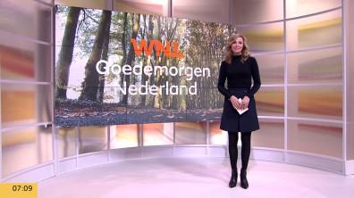cap_Goedemorgen Nederland (WNL)_20181030_0707_00_02_15_01