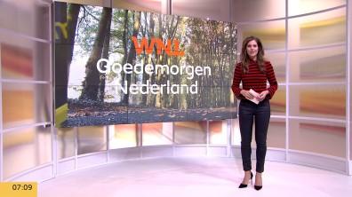 cap_Goedemorgen Nederland (WNL)_20181031_0707_00_02_48_11