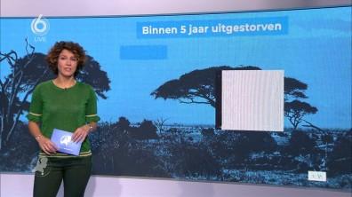 cap_Hart van Nederland - Late Editie_20181030_2227_00_16_10_43