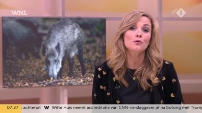 cap_Goedemorgen Nederland (WNL)_20181108_0707_00_20_58_223