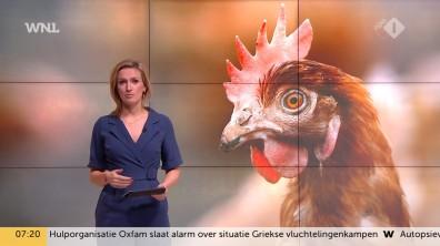cap_goedemorgen nederland (wnl)_20190109_0707_00_13_43_102