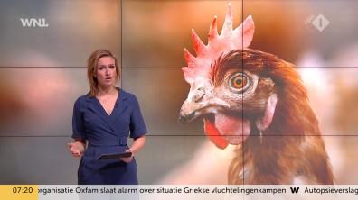 cap_goedemorgen nederland (wnl)_20190109_0707_00_13_44_103