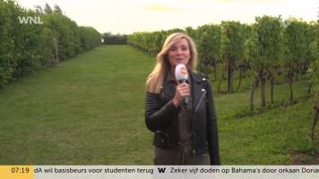cap_Goedemorgen Nederland (WNL)_20190903_0707_00_12_15_164
