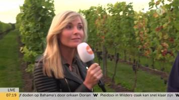 cap_Goedemorgen Nederland (WNL)_20190903_0707_00_12_25_178