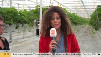 cap_Goedemorgen Nederland (WNL)_20190909_0707_00_16_01_145