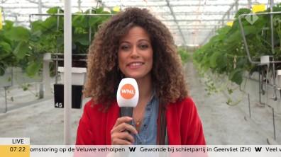 cap_Goedemorgen Nederland (WNL)_20190909_0707_00_16_02_147