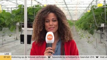 cap_Goedemorgen Nederland (WNL)_20190909_0707_00_16_03_148