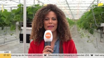 cap_Goedemorgen Nederland (WNL)_20190909_0707_00_16_03_149