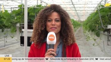 cap_Goedemorgen Nederland (WNL)_20190909_0707_00_16_03_150